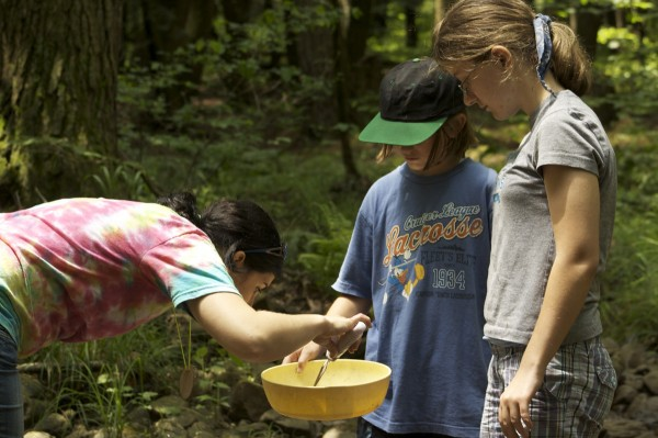 Students examine items found in a local stream