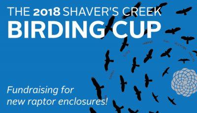 Birding Cup 2018