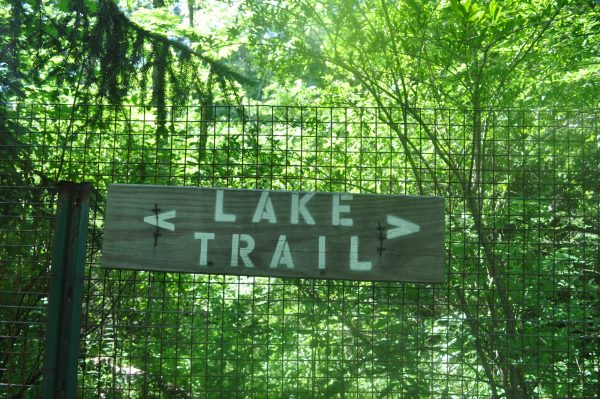 Lake Trail