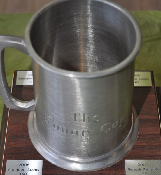 The County Cup award: a silver mug