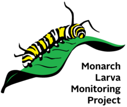 Monarch Larva Monitoring