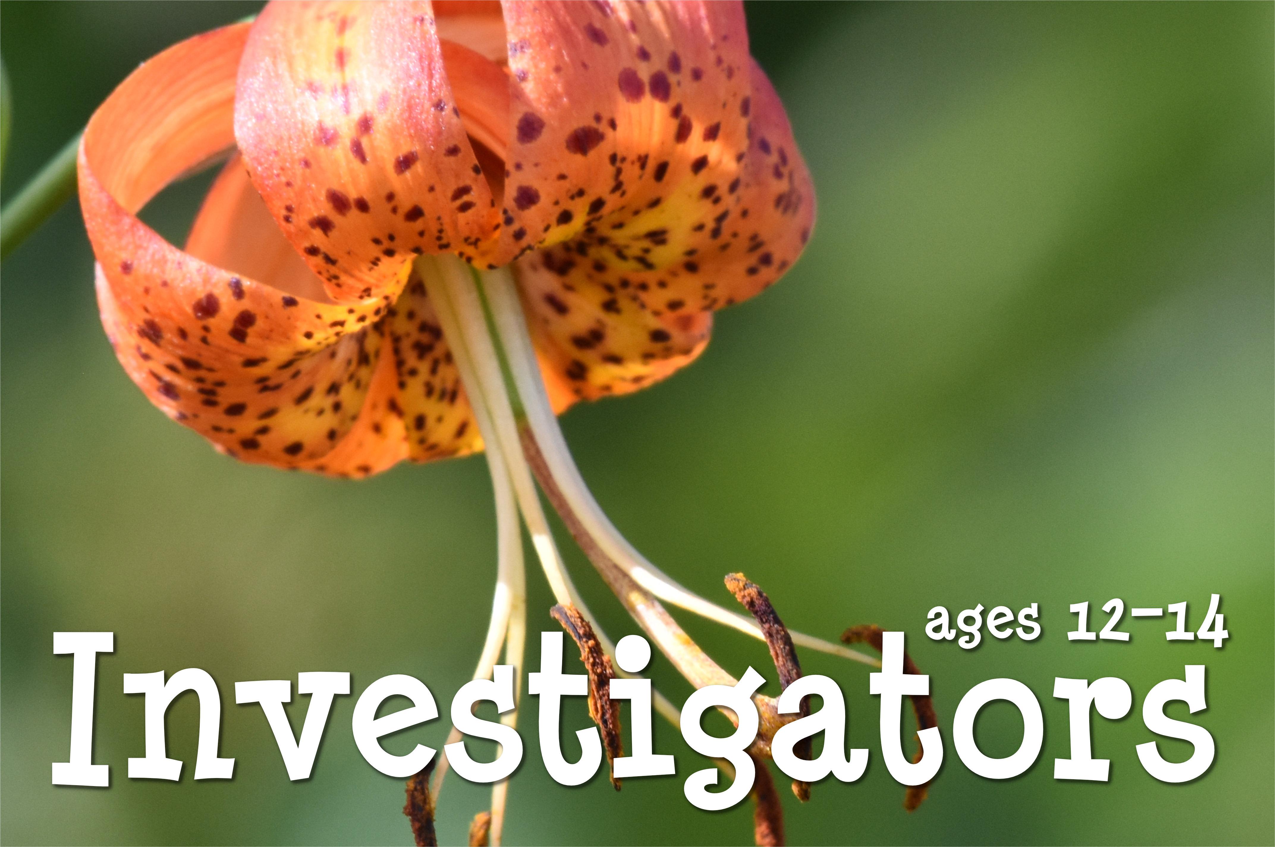 Investigators: ages 12-14