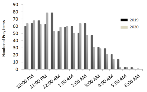 Graph of Number of Prey Items consumed by a pair of nesting barn owls