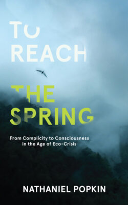 Cover of To Reach the Spring