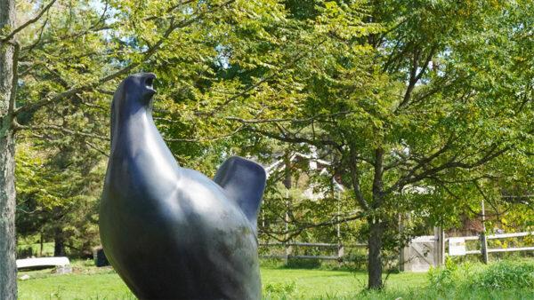 Sculpture of the Heath Hen